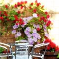 Cotswold Patio 144 by 284_front